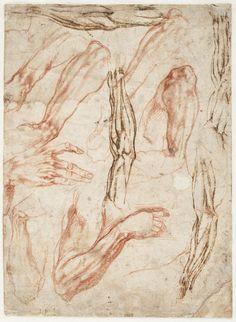 Michelangelo Studies for Sistine ceiling - Creation of Adam ca. 1511 drawing Teylers Museum, Haarlem Michelangelo Studies for Si. Gesture Drawing, Anatomy Drawing, Life Drawing, Figure Drawing, Miguel Angel, Anatomy For Artists, Artist Sketchbook, Greek Art, High Art