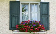 window shutters outdoor