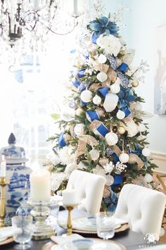 blue-and-white-chris