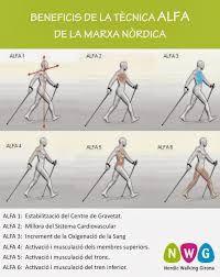 Risultati immagini per nordic walking tecnica Nordic Walking, Cardio Workout At Home, At Home Workouts, What Is Nordic, Benefits Of Walking, Marathon, Walk Run, Sport, Cross Training