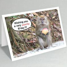 Birthday card Monkey birthday card Monkey peachy birthday card by belvidesigns