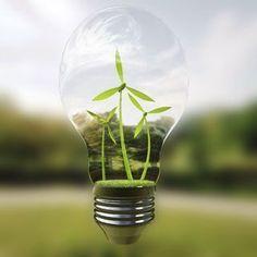 Helping cutting-edge green technologies to market