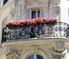 Everything a Balcony Ever Wanted To Be! | From peoniesncupcakes | | { Houseplants 3 #flowers