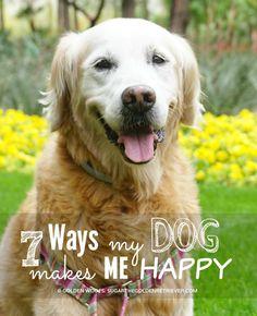 7 Ways My Dog Makes Happy