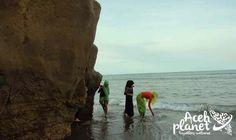 Aceh Planet – Pantai Ulee Kareung Cuma Ada di Bireun