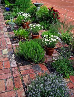 The Checkerboard Herb Garden. Nice idea to contain trailing herbs