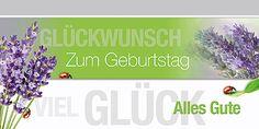 Glückwunschkarte 006722-836, DIN-lang Format, Lavendel, inkl. Kuvert. http://www.litei.de/glueckwunsch-karten/gluckwunschkarte-006722-836-din-lang-format-lavendel-inkl-kuvert