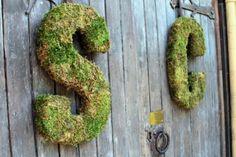 moss initials.