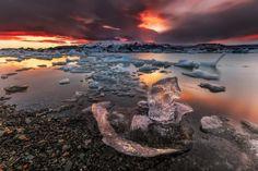 Twilight Swan by Edwin Martinez on 500px