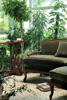 plants for sunrooms | Great idea for a sunroom...fill it with greenery!