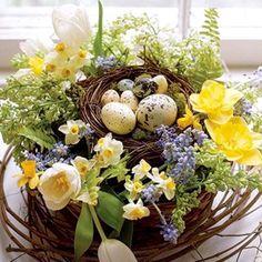 Signs of...#Spring #birdnest #eggs #flowers #pinterest