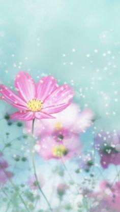 What a pretty flower!!