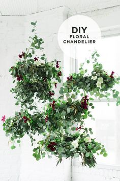 How to Make a Flower Chandelier with Eucalyptus and Clematis by Design Love Fe … - Diy Event Flower Chandelier, Diy Chandelier, Decoration Plante, Clematis, Indoor Plants, Hanging Plants, Houseplants, Chandeliers, Flower Power