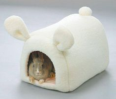 A bunny hide-a-way