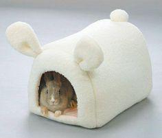A bunny hide-a-way