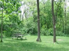 Enjoy plenty of space at lush and relaxing Red Oak Campground near Wisconsin Dells.