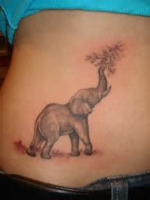 Image result for Elephant Tattoo Designs for Women