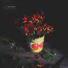 Veronica, Flower Art, Art Photography, Bloom, Instagram Posts, Flowers, Painting, Art Floral, Fine Art Photography