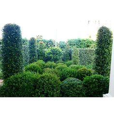 Jardin al estilo de los jardines de Chelsea #sotogrande #jardin #gardendesigner #jpdesigner #garden #plant #topiary #traveling #Luxury
