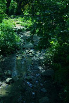 新宿御苑-言の葉の庭巡礼 - mellow tempo -めろうてんぽ-