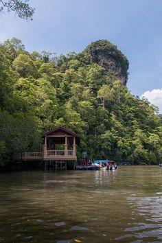 Mangrove Tour, Langkawi: Surprise Stingray Attack