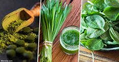 Chlorophyll has a number of important biological activities; this includes binding to carcinogenic chemicals, allowing your body to safely eliminate them. https://articles.mercola.com/sites/articles/archive/2018/07/16/why-you-should-eat-more-chlorophyll-rich-foods.aspx?utm_source=dnl&utm_medium=email&utm_content=art1&utm_campaign=20180716Z2&et_cid=DM222199&et_rid=366978649