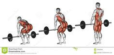 A go-to guide for why and how to deadlift for climbing gains this spring!