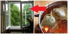 Keď starká išla umývať okná, vždy najskôr postavila na silný čaj: Ide o geniálnu fintu, ktorú v týchto dňoch využije každý!