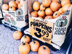 autumn time is pumpkin time Pumpkin Carving, Pumpkin Spice, Autumn Aesthetic, Seasons Of The Year, Happy Fall Y'all, Hello Autumn, Autumn Inspiration, Fall Season, How Beautiful