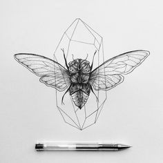 Cicada  #illustration #ink #iblackwork #dots #dotwork #black #cicada #crystal by marinalatre