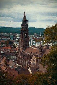 Freiburg, Münsterplatz, Photography, Flowers, Inspiration, Fotografie, Colorful, Nature, Germany, Dreisam, Schlossberg, Black Forest, Christina Key, Fairytale, Christina Keys Blog, Fashion, Photography Blog, Girl, Woman, Tips, Lifestyle, Passion, Love, Food, Healthy,