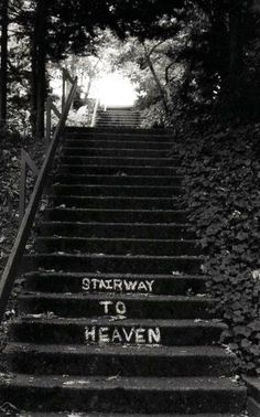 best song ever Led Zeppelin Stairway to heaven Black Aesthetic Wallpaper, Gray Aesthetic, Black And White Aesthetic, Music Aesthetic, Aesthetic Collage, Aesthetic Grunge, Aesthetic Vintage, Black And White Picture Wall, Black And White Pictures