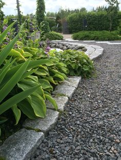 Concrete Pavers, Flagstone, Garden Cottage, Love Images, Shade Garden, Walkway, Garden Paths, Bouldering, Courtyards