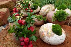 Kameny - Stones