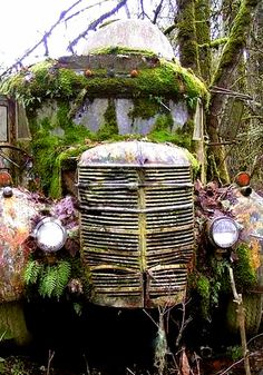 overgrown bus  This is how I imagine the relics of the Old Ones in The Dark Tower series.