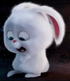 A place for really cute pictures and videos! Funny Iphone Wallpaper, Cute Disney Wallpaper, Cute Cartoon Wallpapers, Snowball Rabbit, Cute Bunny Cartoon, Rabbit Wallpaper, Pets Movie, Cute Cartoon Characters, Cute Love Memes