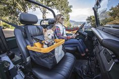Dog Harness, Dog Leash, Dog Car Seats, Commute To Work, Dog Travel, Pet Carriers, Pet Health, Get Outside, Health And Safety