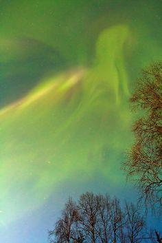 Northern Lights - Pegasus, Alaska