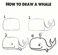 How to draw a whale!                                                                                                                                                     More