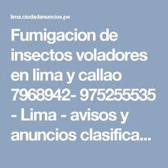 Fumigacion de insectos voladores en lima y callao 7968942- 975255535 - Lima - avisos y anuncios clasificados gratis en Perú
