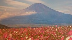 Beautiful Mount Fuji