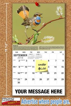 2021 Garden Song Birds Wall Calendars low as Advertise your business, organization or event logo and ad message the entire year! Promotional Calendars, Wall Calendars, Garden Birds, Business Organization, Your Message, Holiday Cards, Messages, Seasons, Songs