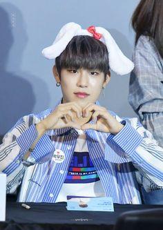 Jinyoung, Kpop, Park, Twitter, Bts, Puppies, Puppys, Cubs, Doggies