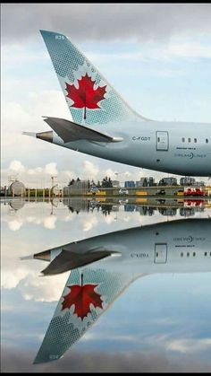Canada Eh, Toronto Canada, Boeing 787 Dreamliner, Immigration Canada, Passenger Aircraft, Canadian Travel, Commercial Aircraft, Civil Aviation, Bus
