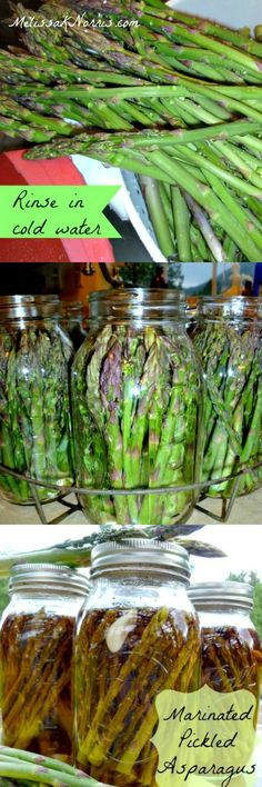 These have replaced regular pickles at our house. Oh, my ,we almost eat an entire jar at once. Awesome way to preserve asparagus. Learn how to make and can pickled asparagus now!
