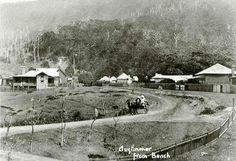 Austinmer. South Coast NSW History