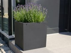 beton pflanzkübel anthrazit