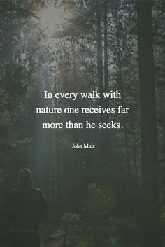 31 Ideas for quotes poetry nature john muir Frases De John Muir, John Muir Quotes, The Words, Forest Quotes, Quotes About Forest, Quotes About Nature, Walking Quotes, Into The Woods Quotes, Water Quotes
