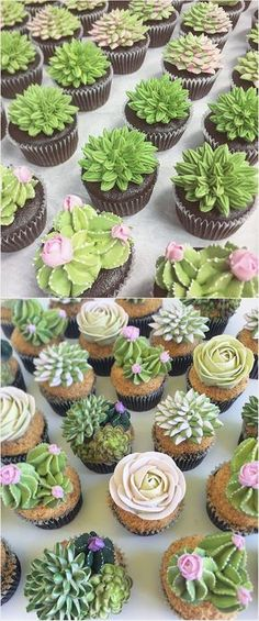 ❇️ Succulent Icing Cupcake Arrangements- Pictures ONLY Just Desserts, Delicious Desserts, Dessert Recipes, Yummy Food, Cupcake Icing, Cupcake Cakes, Frosting, Cupcake Arrangements, Succulent Cupcakes