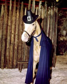 The Famous Mister Ed #MisterEd.    / I love the colored picture EL.